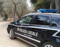 La polizia locale chiude un'attività ricettiva abusiva a Torre Mozza
