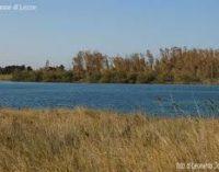 Dichiarazioni del Direttore Generale dell'Università del Salento in merito al bacino di Acquatina