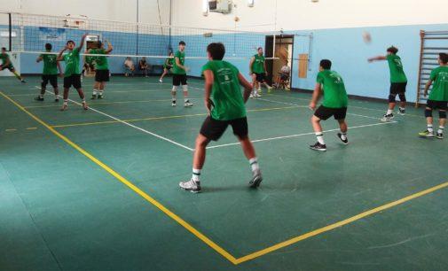La Fipav Puglia ha ufficializzato i due gironi del campionato nazionale di I Livello Serie C